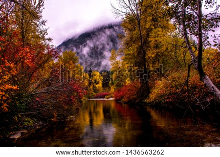 Fall colors and fog in the mountains #1436563262