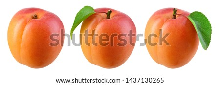 Apricot isolate. Apricots on white. Fresh apricot fruit. Set with clipping path. #1437130265