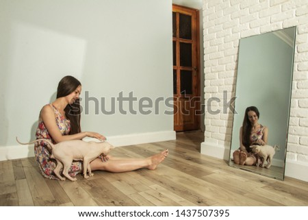 A girl with a sphinx sitting on the floor in the room is reflected in the mirror, an overall plan #1437507395