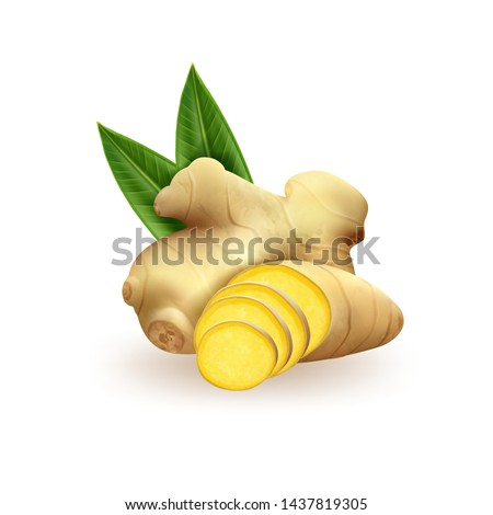 Realistic fresh ginger root on white background. Vector Royalty-Free Stock Photo #1437819305