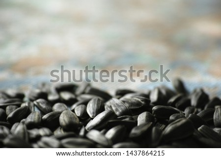 Sunflower seeds on a colored background. Large resolution image. #1437864215