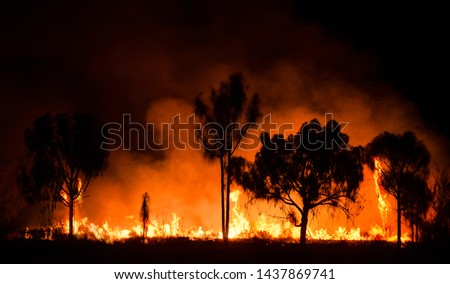 Bush fire In australian outback #1437869741