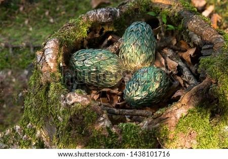 dragon egg mythology legends nest in the forest selenium forest