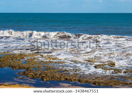 The high tide from Indian Ocean waves breaking near the shore at Ocean Beach Bunbury Western Australia has brought in piles of brown seaweed onto the rocky shore in winter creating a scenic seascape . #1438467551