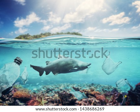 Plastic bags and bottles underwater in the ocean. Pollution problem causing damage in fish and coral reef. #1438686269