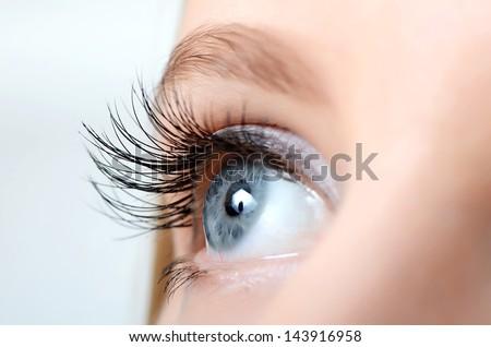 Female eye with long eyelashes close up Royalty-Free Stock Photo #143916958