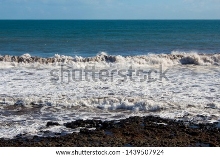 The high tide from Indian Ocean waves breaking near the shore at Ocean Beach Bunbury Western Australia has brought in piles of  brown seaweed on a fine afternoon in winter creating a scenic seascape . #1439507924