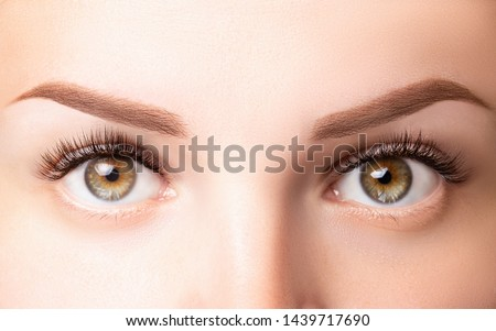 Female eyes with long eyelashes. Classic 1D, 2D eyelash extensions and light brown eyebrow close up. Eyelash extensions, lamination, biowave, microblading concept. #1439717690