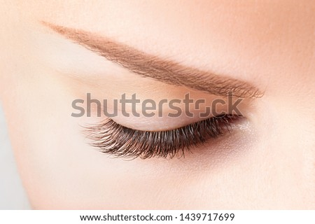 Closed female eye with long eyelashes. Classic 1D, 2D eyelash extensions and light brown eyebrow close up. Eyelash extensions, lamination, biowave, microblading concept. #1439717699