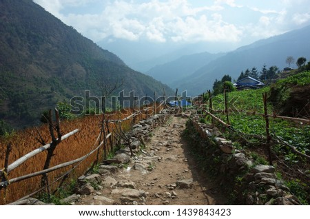 Mountain trail between fields on Jiri to Lukla - the lower part of Everest trek in Himalayas, Solukhumbu region, Nepal #1439843423