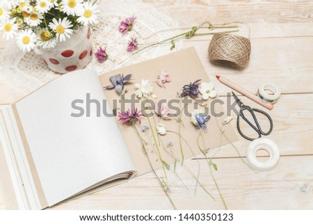 Process of making herbarium. Dried herbs and dried flowers for making herbarium #1440350123