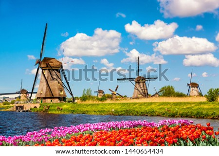 Colorful spring landscape in Netherlands, Europe. Famous windmills in Kinderdijk village with a tulips flowers flowerbed in Holland. Famous tourist attraction in Holland #1440654434
