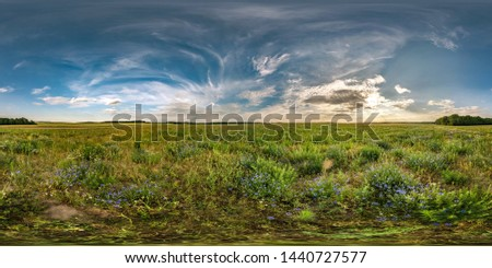 full seamless spherical hdri panorama 360 degrees angle view among cornflowers fields in summer evening sunset with beautiful clouds in equirectangular projection with complete zenith #1440727577