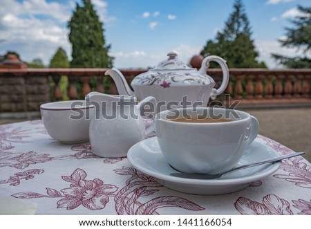Nice cup of tea. Pretty china teapot, milk jug, sugar bowl, cup and saucer, tea spoon sits on a pink and white pattern tablecloth outside in the park. Dry sunny day, no people. No people. #1441166054