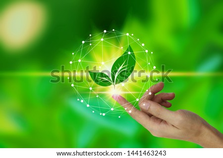 Finger touch with leaf icon over the Network connection on nature background, Technology ecology concept. environment concept.