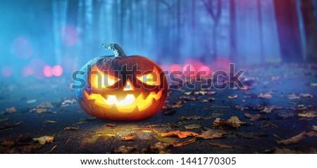 Halloween Pumpkins Glowing In Fantasy Night Forest . Jack O Lantern Holiday Horror Background #1441770305