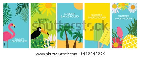 Collection set of social media stories design templates summer backgrounds.  Illustration  #1442245226