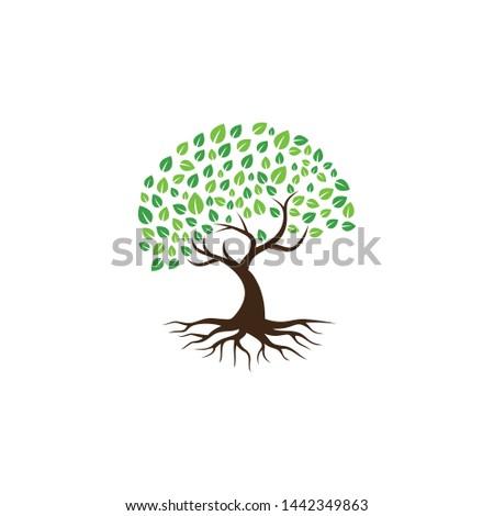 Tree vector icon. logo design elements. #1442349863