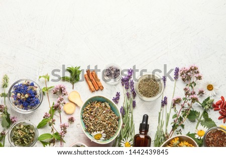 Various kinds of herbal tea. Natural herbs medicine. Top view with copy space #1442439845