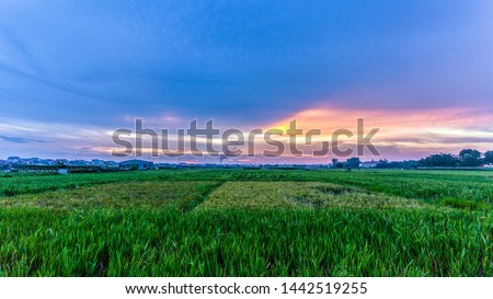 Colourful cloudy sky in Vinh Tuong, Vinh Phuc district, Vietnam #1442519255