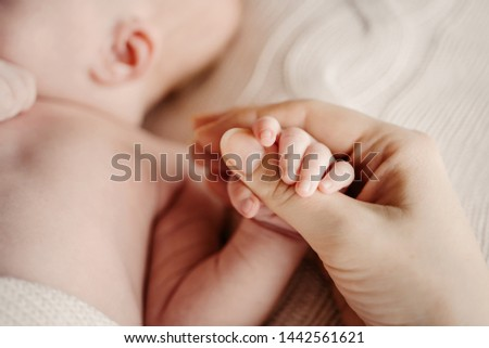Little handle newborn baby in mom's big hand. Concept hrukosti and innocence #1442561621