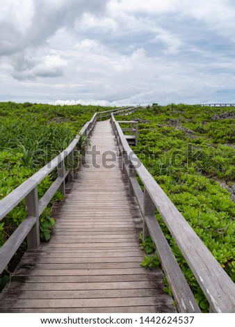 Toriike Pond is a pond located in the western part of Shimojijima Island, Miyakojima, Okinawa, Japan. It looks like two ponds lined up next to each other but they are actually connected underground. #1442624537