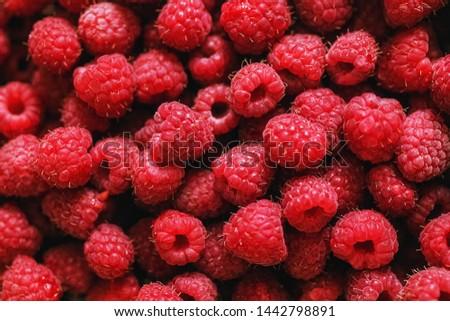 Ripe raspberries.Berries.A handful of raspberries.Scarlet.Raspberry field.Raspberry juic Royalty-Free Stock Photo #1442798891