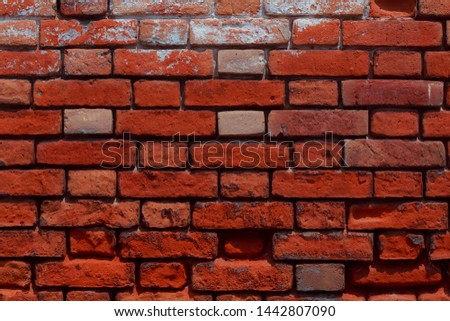 Old grungy brick wall with natural defects. Scratches, cracks, crevices, chips, dust, roughness  #1442807090
