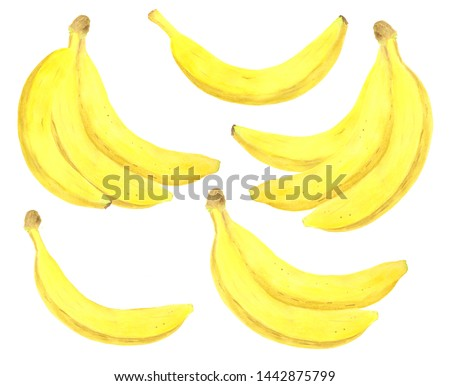 Watercolor banana set. Hand drawn fresh healthy dieting food illustration on white background for package design, textile, wrapping, menu, scrapbooking #1442875799