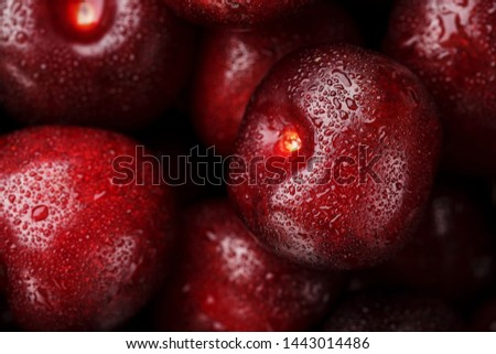 Ripe and fresh berries of a sweet cherry with water drops closeup. Macro #1443014486