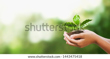 hand holding young plant on blur green nature background. concept eco earth day #1443475418