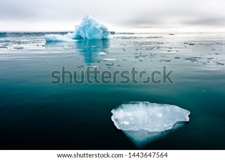 A wide low angle view of melting sea ice floes in still waters of Northern Arctic with iceberg and glacial wall in background.Climate Crisis and Breakdown.Climate emergency.Image #1443647564