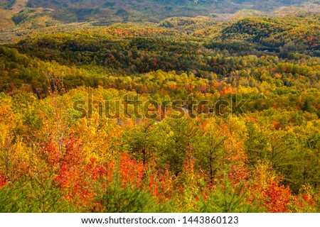 View fron the foothills parkway of hills with trees showing autumn fall colors.  The Foothills Parkway is a national parkway which traverses the foothills of the Great Smoky Mountains inTennesse