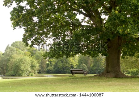 Park bench next to tree daytime picture