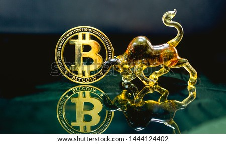 Digital coin money model Bitcoin  ้and Bull model Lay on the reflective glass floor. Concept  price trend of the BTC. coin value will  uptrend or downtrend with a bull model. #1444124402