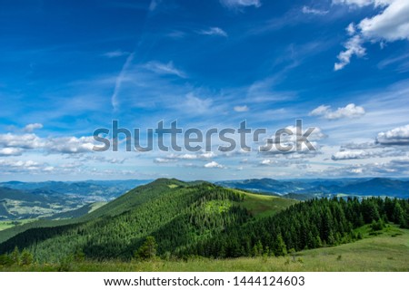 Mountain glade on a sunny day in the Carpathians #1444124603