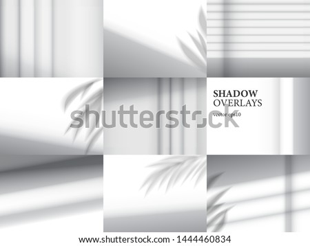 Shadow overlays for mockup presentations. Organic and jalousie shadows for natural light effects #1444460834