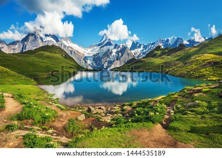 Sunrise  view on Bernese range above Bachalpsee lake. Popular tourist attraction. Location place Swiss alps, Grindelwald valley, Europe.  #1444535189