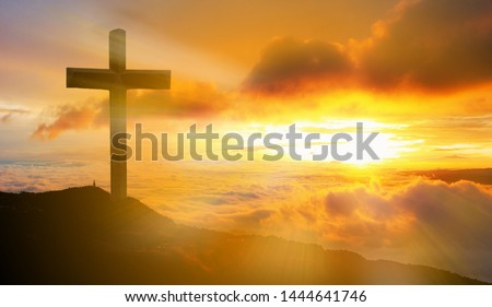 Cross with the Bible, Jesus Christ, abstract concept #1444641746