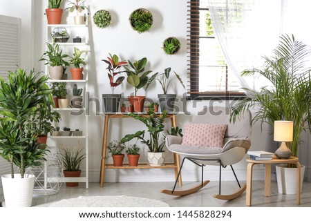 Stylish room interior with different home plants Royalty-Free Stock Photo #1445828294