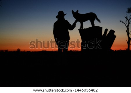 Australian outback sunset silhouette cowboy and kelpie working dog #1446036482