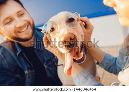 Funny dog in sunglasses with man and woman for walk. #1446046454