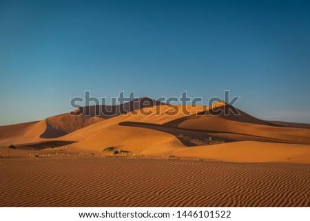 Sands of Namib desert, Namibia #1446101522