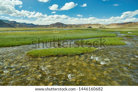 Mongolian Altai.  Current mountain stream, Scenic valley on the background of the snowcapped mountains. #1446160682