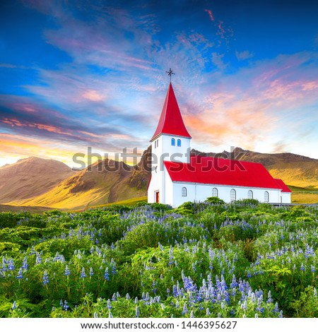 Fantastic sunset view of Vikurkirkja christian church in blooming lupine flowers. Scenic image of most popular tourist destination.Location: Vik village in Myrdal Valley, Iceland, Europe.