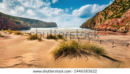 Colorful morning view of Cala Domestica beach. Sunny summer scene of Sardinia, Italy, Europe. Fantastic landscape of Canyon di Cala Domestica. Beauty of nature concept background. #1446583622