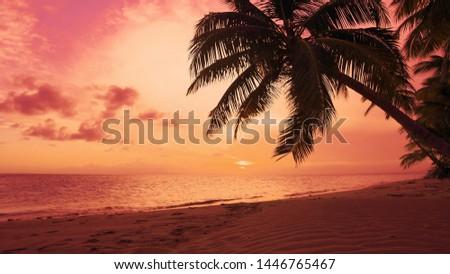 Red dawn on palm isle beach. Seascape dawn over sea. Orange clouds in red sky Sun dawn on palms beach background. Atlantic ocean nature landscape. Dominican Republic beach sun dawn. Sea shore seascape #1446765467