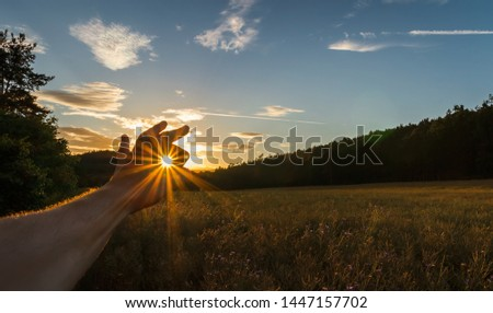 Man hand catch sun at sunset on field with forest and sky. Czech landscape #1447157702