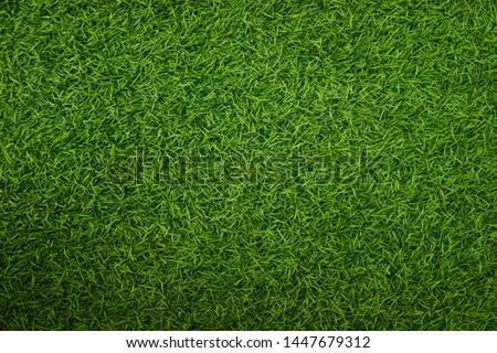 Green artificial grass natural background #1447679312