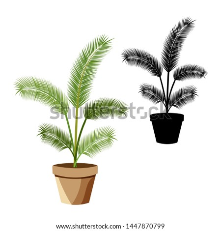Set of vector detailed house plant for interior design and decoration.Tropical plant for interior decor of home or office.Color and monochrome  drawings. #1447870799